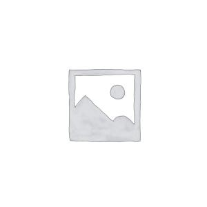 Programas Basados en Microsoft 365